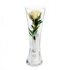 """""""NaturalFlowers"""" Арт: CuHRc цветы в стекле"""