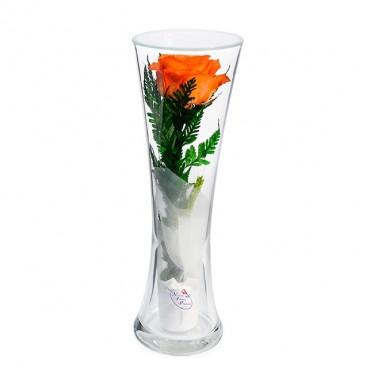 """NaturalFlowers"" Арт: CuHRo цветы в стекле"